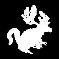 003 - Logo - white-01-150px x150px