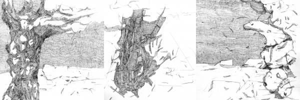 martin bozenhard - zarter riss im gefüge der vernunft - zusammen - drawing - ink - 20cm x 20cm